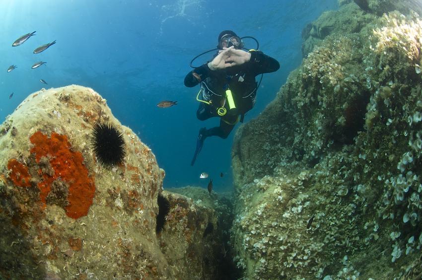 Spiro Sub Diving Elba, Marina di Campo (Elba), Italien, Elba