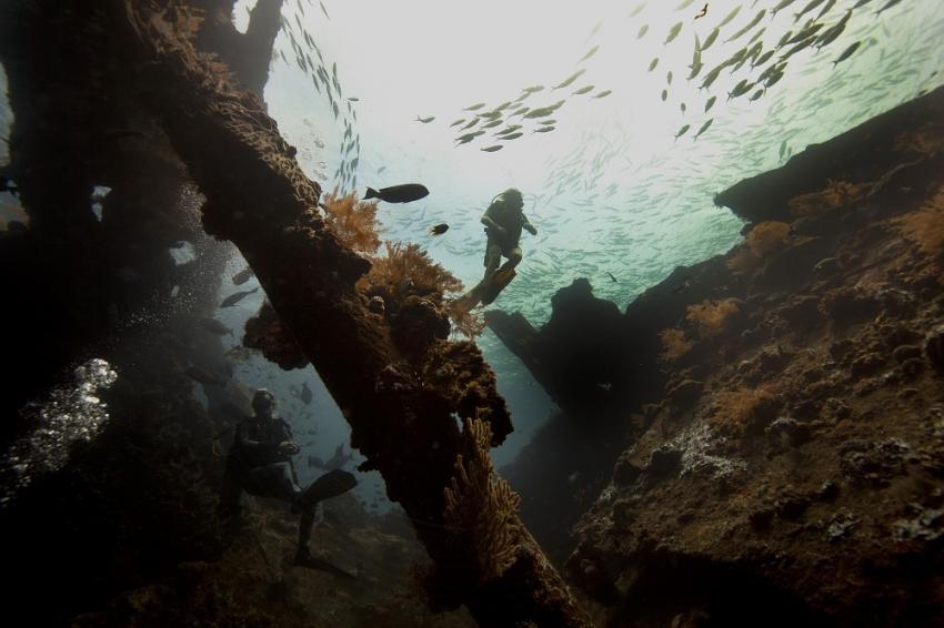 USAT Libert Wreck, Blue Season Bali, Indonesien, Bali