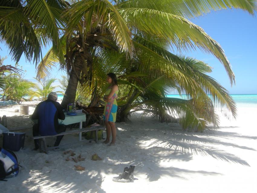Cocos Keeling, Cocos Keeling,Australien,Mittagspause,Oberfächenpause,Strand,Palmen