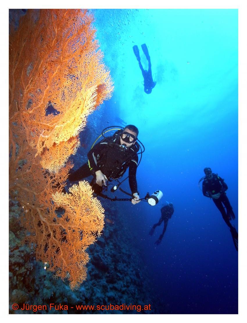 Impressionen vom Roten Meer
