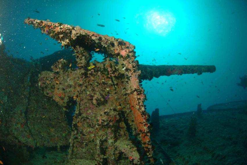 GUN THISTLEGORM, Red Sea Diving College, Sharm el Sheikh, Ägypten, Sinai-Süd bis Nabq