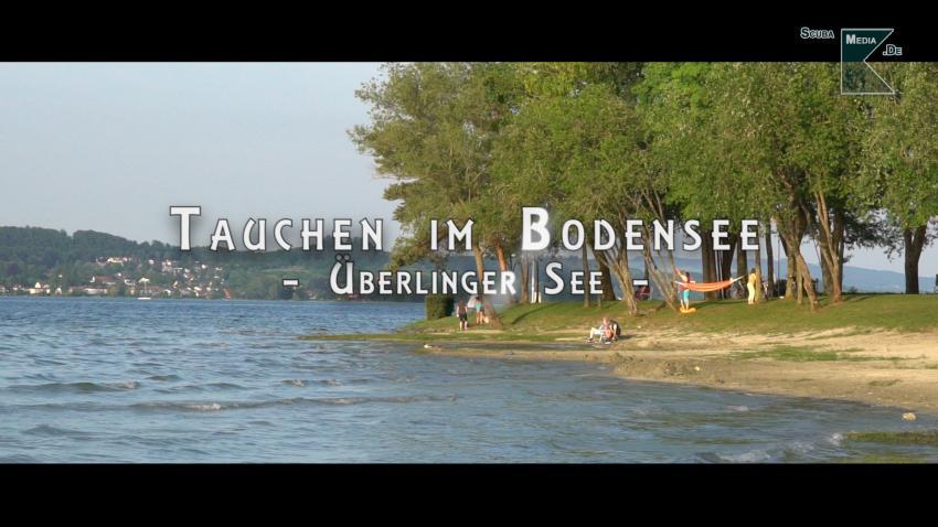 Tauchen im Überlinger See, Überlinger See, Wallhausen, Überlingen, Dingelsdorf, Bodman, Bodman-Ludwigshafen, Bodensee, Überlinger See, Deutschland, Baden Württemberg