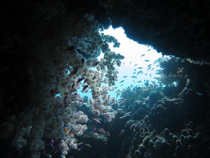 Sipaway Island, Sipaway Island,Philippinen