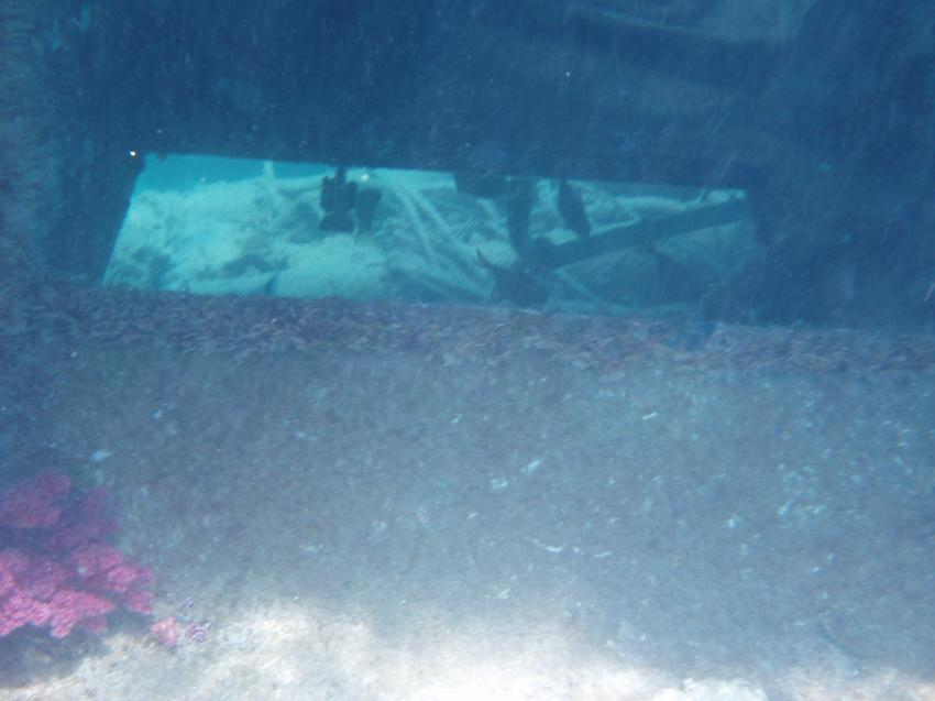 Wrack vor Jasmin Diving, Wrack vor Jasmin Diving,Ägypten