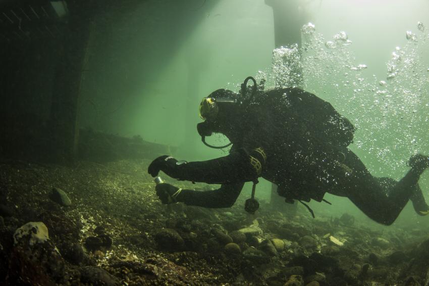 Rhybadi, Dugong Dive Center, Rhybadi, Schweiz, taucher, süsswasser, steg