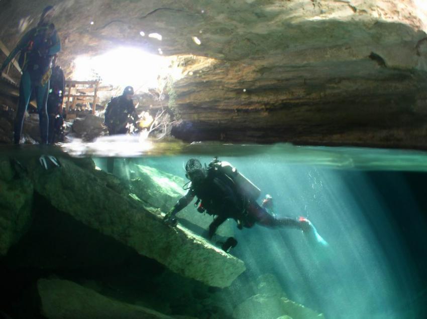 Grand Bahama, Grand Bahama,Bahamas,höhle,cenote,einstieg,halb-halb
