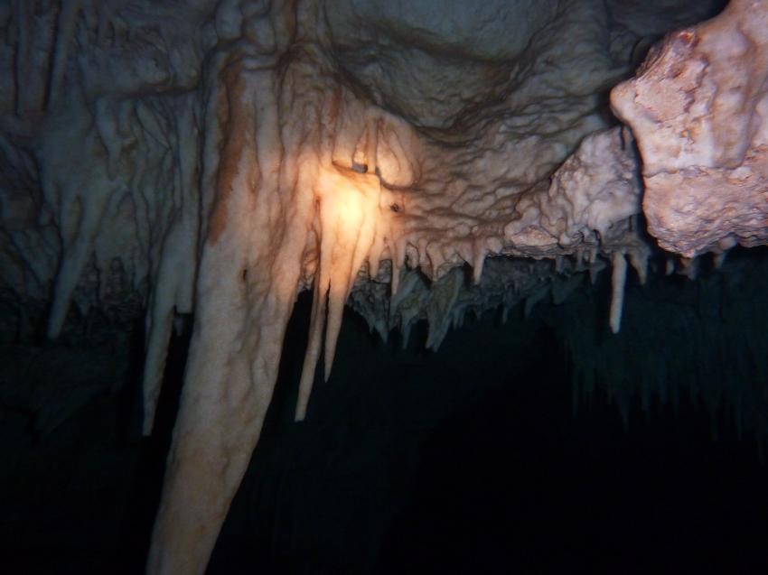 Höhlentauchen Boca Chica