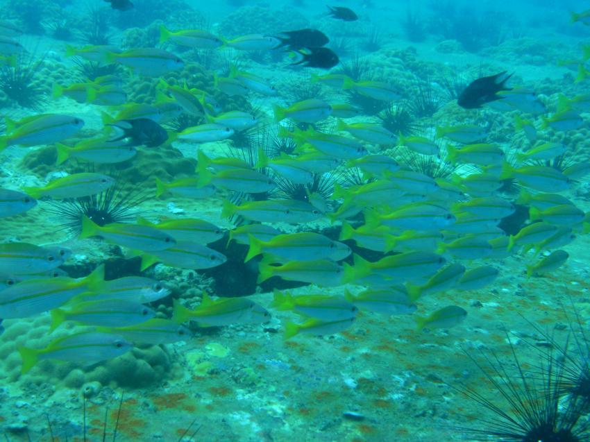 Malaysia, Pulau Perhentian,Malaysia