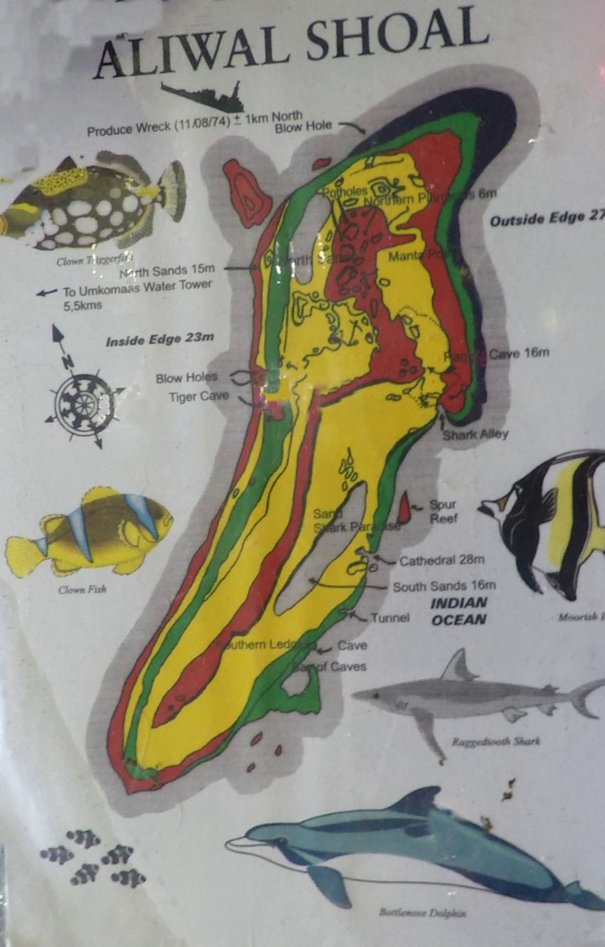 Aliwal Shoal tolles Gebiet, Aliwal Dive Centre and Lodge, Umkomaas, Südafrika