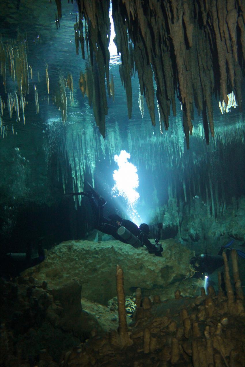 Höhlentauchen, Stalaktiten, Cenoten, Halocline Divers, Mexiko