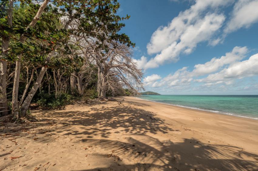 Strand mit Baobabs, Strand, Baobab, Abalone Plongée, Mayotte, Komoren, Mayotte