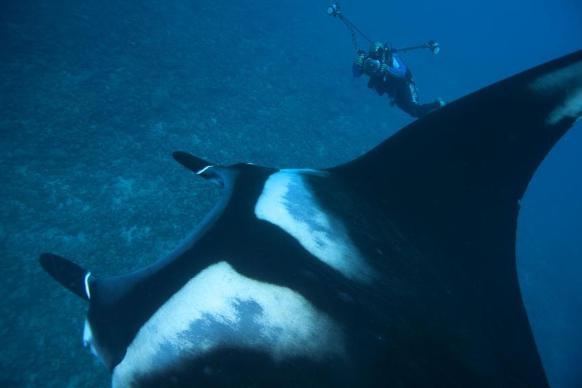 Unterwasser mit ScubaCaribe, ScubaCaribe Guanacaste - RIU Hotels, Costa Rica