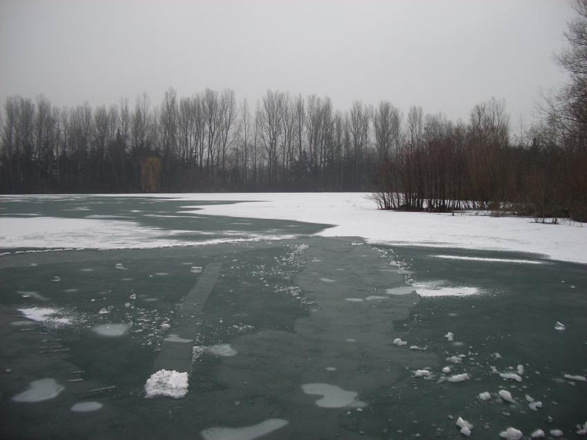 Oerkhaussee und Elbsee (NRW), Oerkhaussee und Elbsee,Nordrhein-Westfalen,Deutschland,Eistauchen