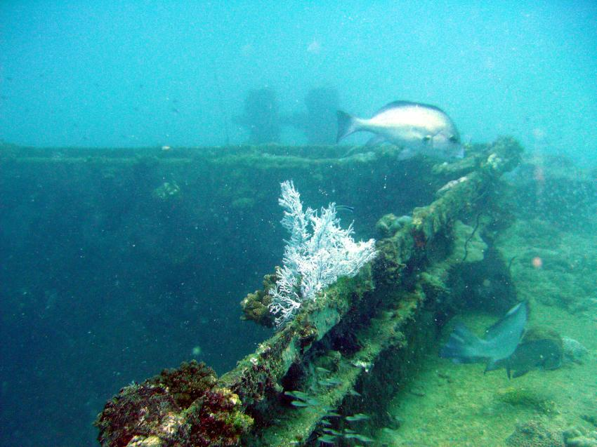 Mahé - Twin Barges, Mahe,Beau Vallon,Twin Barges,Seychellen