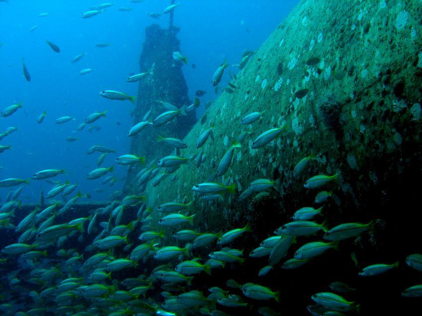 Aquadivers, Phuket, Nai Thon