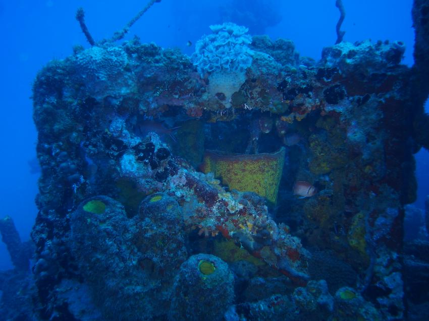 Northern Coast Diving, Sosua, Dominikanische Republik