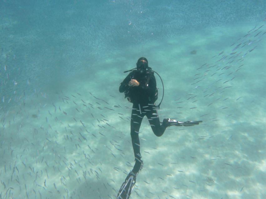 Aphrodite Diving Center, Hurghada