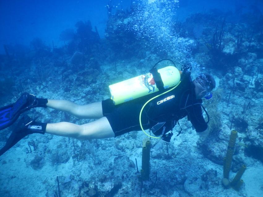 """Unser Tauchlehrer Udo im """"Aquarium"""" vor Catalina Island, Ultra Marine Divers, Punta Cana, Dominikanische Republik"""