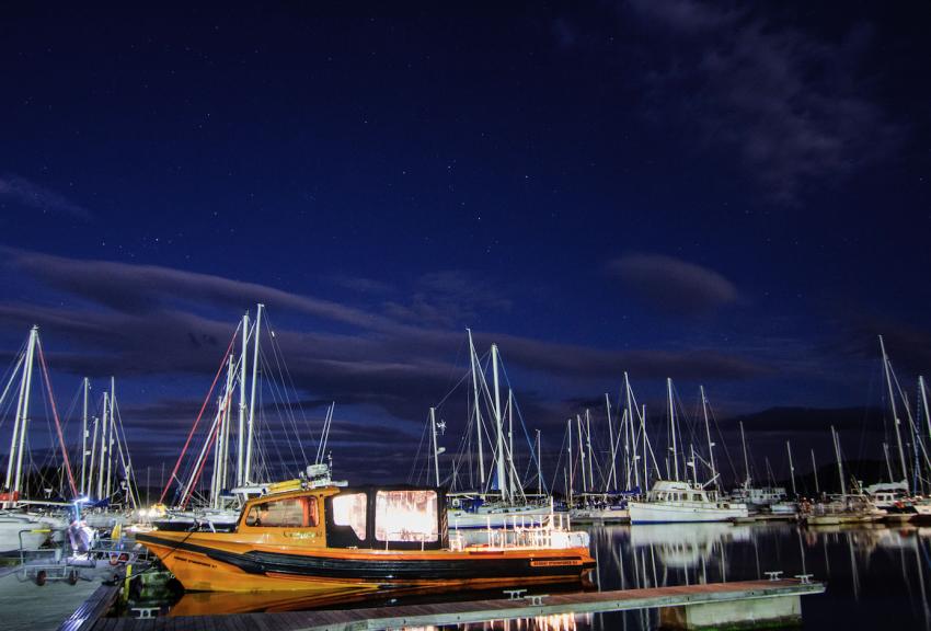 "Tauchboot Cearban, Blackwater, Nachttauchgang, Schottland, Basking Shark Scotland, Riesenhai, ""Blackwater"" Nachttauchgang, Großbritannien"