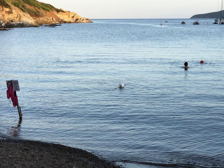 Barbarossa Bucht, Omnisub, Porto Azzurro (Elba), Italien, Elba
