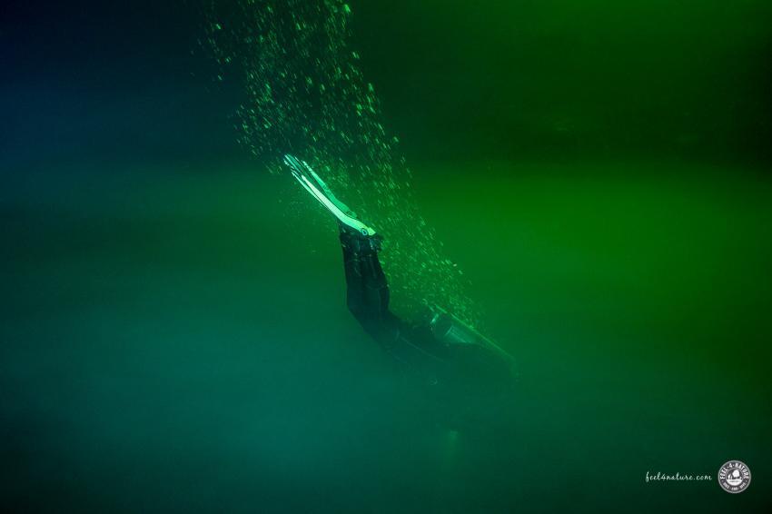 Abtauchen durch die Trennschichten in den Cenoten, Cenote Adventures, Mexiko