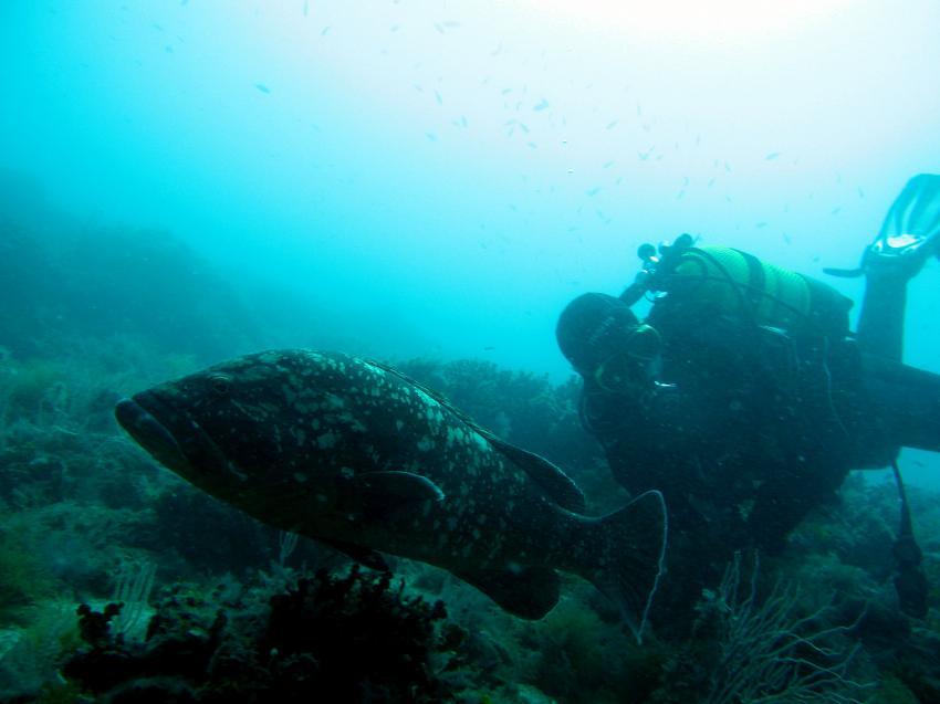 Costa Brava - Ille Medes