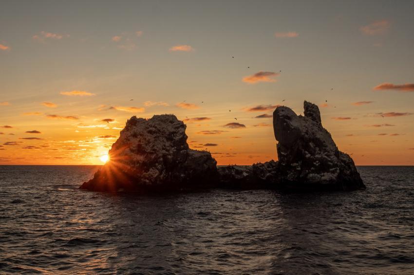 Sonnenuntergang Roca Partica, M/V Nautilus Explorer, Socorro Tour, Mexiko