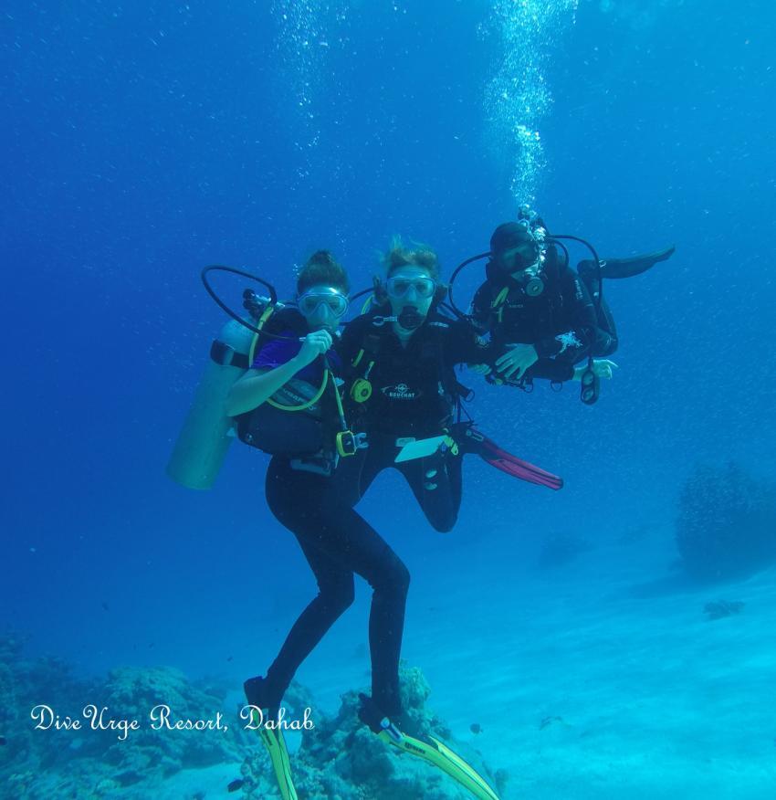 Mädchen Dive at Eel Garden , Dahab. Girls Dive at Eel Garden, Dahab , dahab, Aal Garten, Dive Urge Dive Resort, Dahab, Ägypten, Sinai-Nord ab Dahab