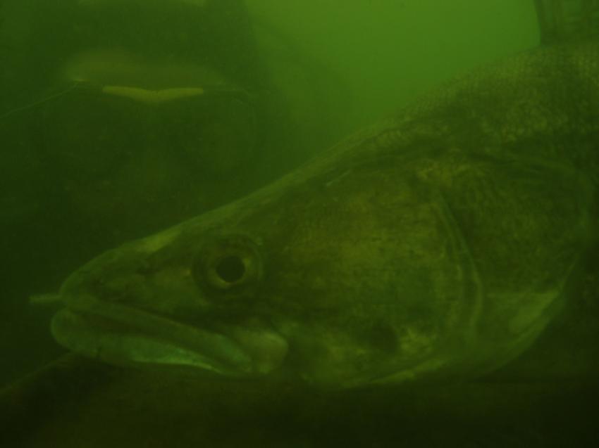 Remerschen Badesee