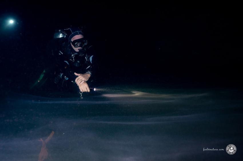 Schwefelschicht auf 30 Metern Tiefe, Cenote Adventures, Mexiko