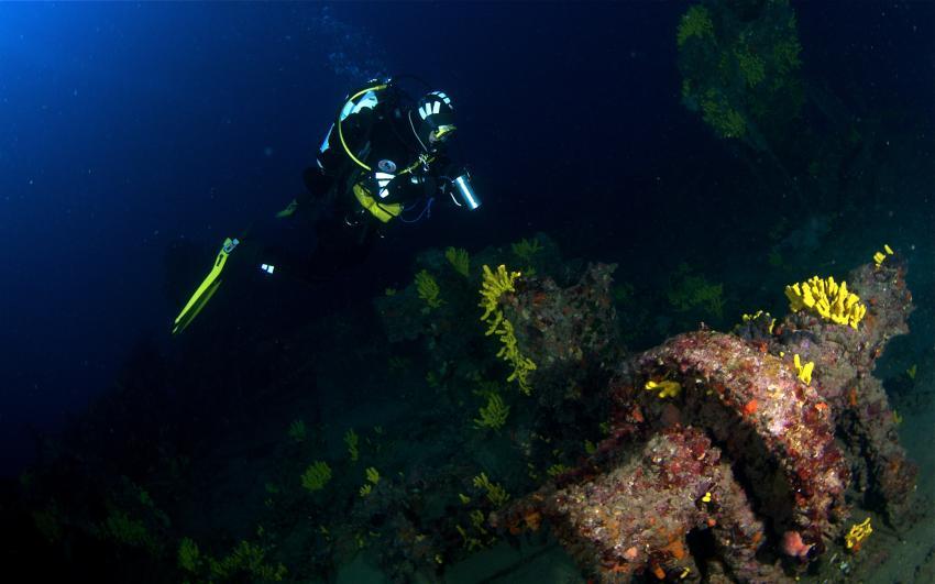 Francesca di Rimini / Kaprije / Najada Diving, Francesca da Rimini,Kroatien,Koralle,Taucher,Wrack