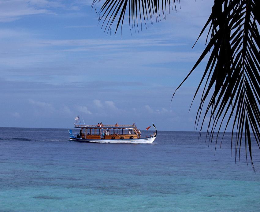 Thudufushi (Alifu Dhaalu Atoll), Thudufushi,Malediven
