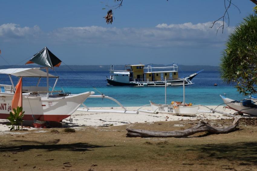 Tauchsafari Philippinen, Pamilacan Island, Bernds Tauchsafaris, Bohol, Philippinen