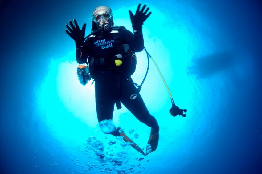 Bali diving, Blue Season Bali, Indonesien, Bali