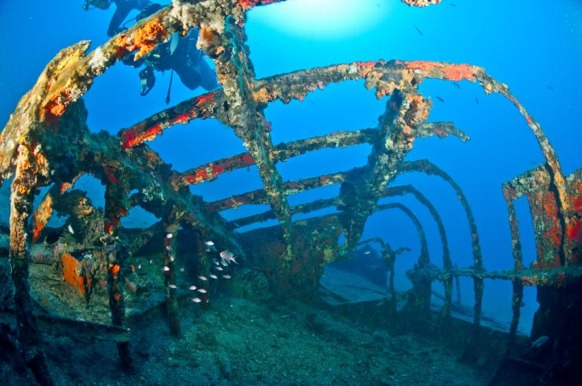 Topspot Wreck dives,EUROPEAN DIVING SCHOOL, Europeandiving School, St.-Tropez (Südfrankreich), Frankreich