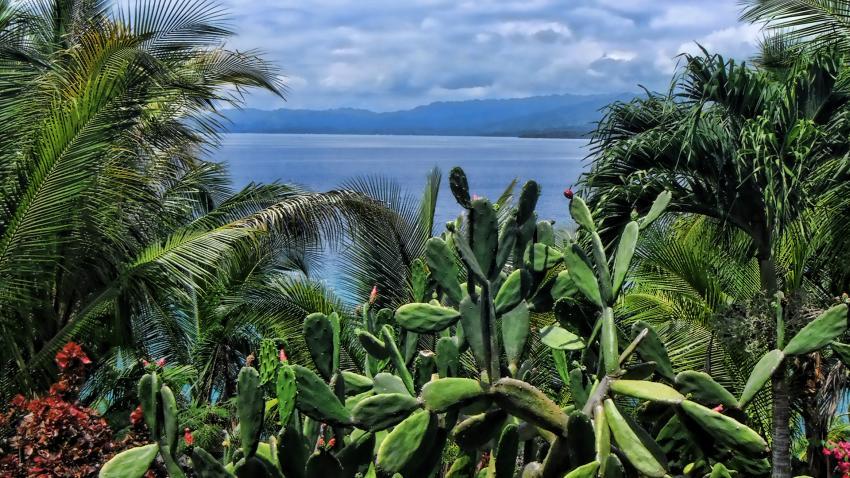 Tropische Vegetation mit Blick aufs Meer