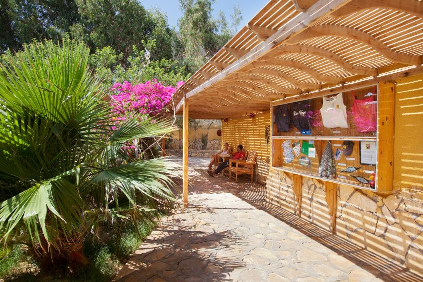 Club grounds, Dive Urge Dive Resort, Dahab, Ägypten, Sinai-Nord ab Dahab