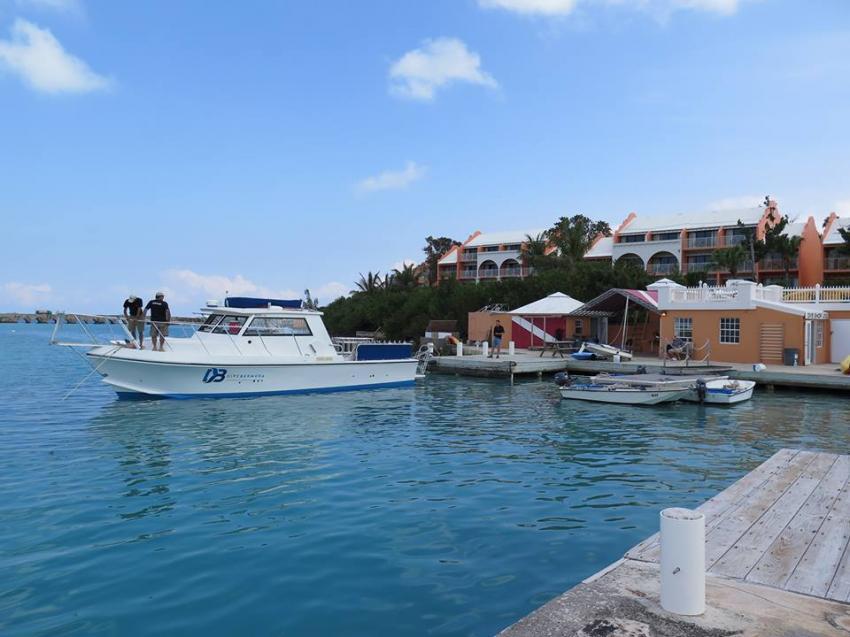 Dive Bermuda Grotto Bay, Bermuda