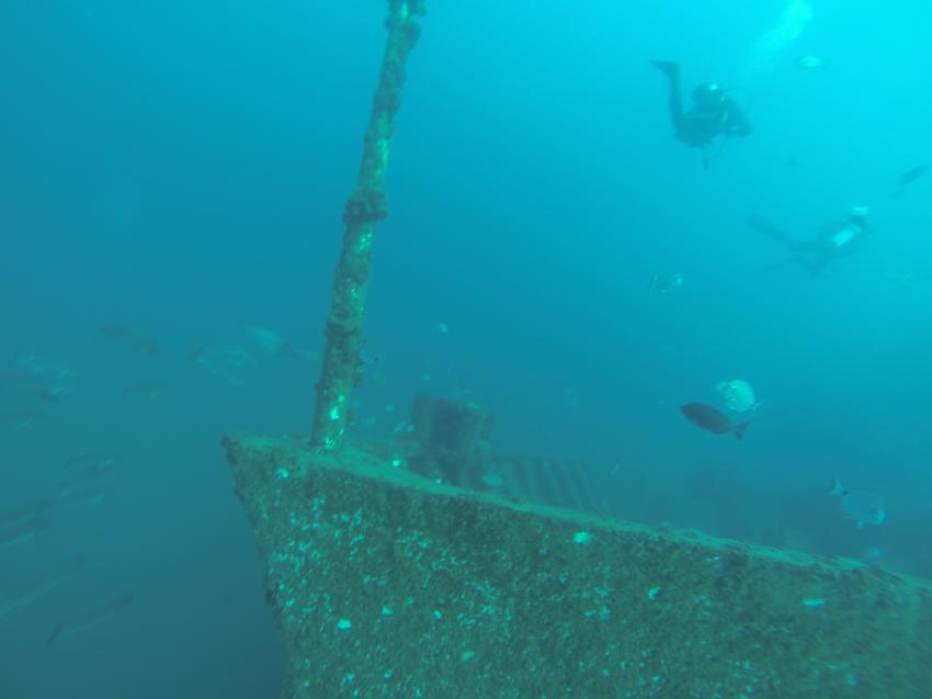 Ocean Rev., Gopro, Dive Club Cipreia, Lagos, Portugal