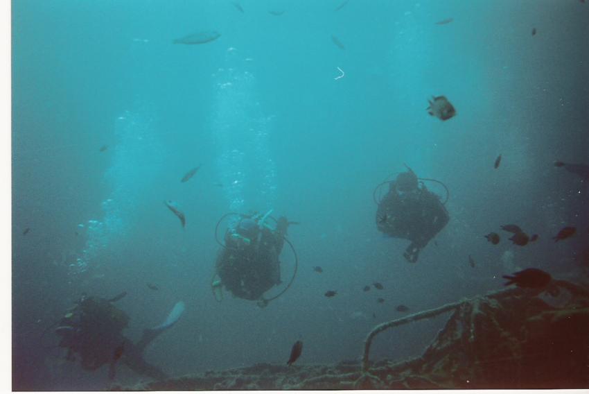Vrsar, Vrsar,Kroatien,Dezza,Wrack,Wracktauchen,Torpedoboot