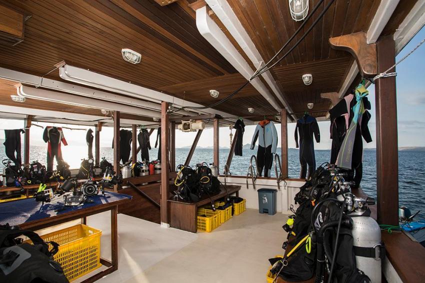 Diving deck MV Ambai, Diving deck MV Ambai, MV Ambai, Indonesien, Allgemein