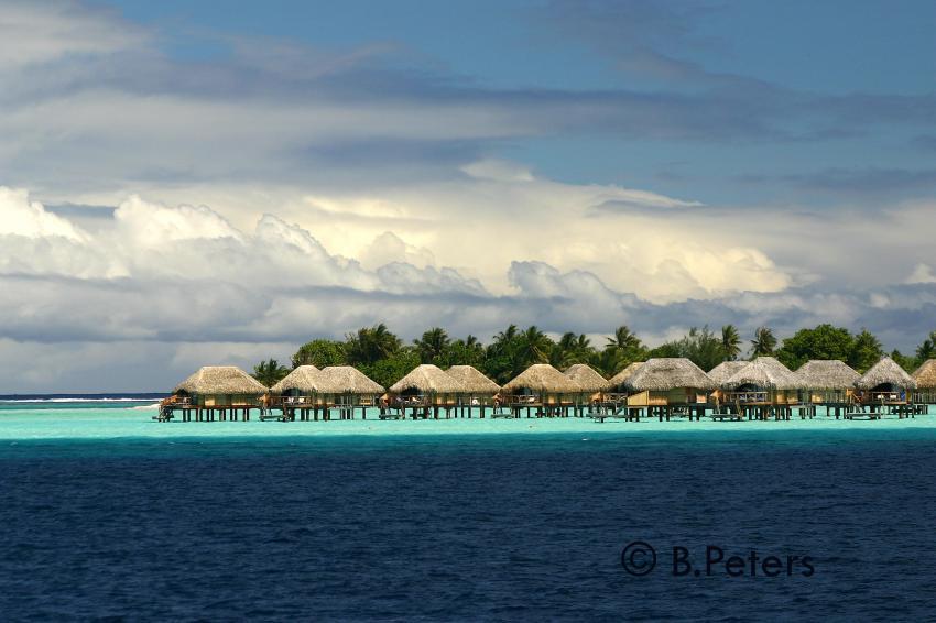 Bora Bora, Bora Bora,Französisch-Polynesien,Insel,Palmen