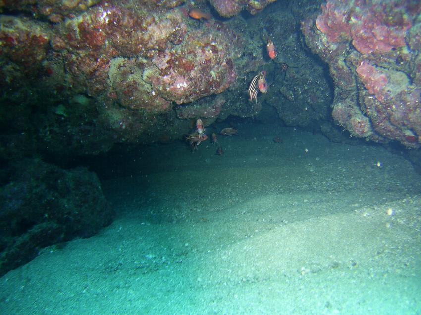 Viele Höhlen., Scuba Turtle - Diving School, Türkei