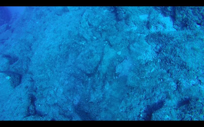 Octopus getarnt, Atlantis, Rethymnon, Kreta, Griechenland