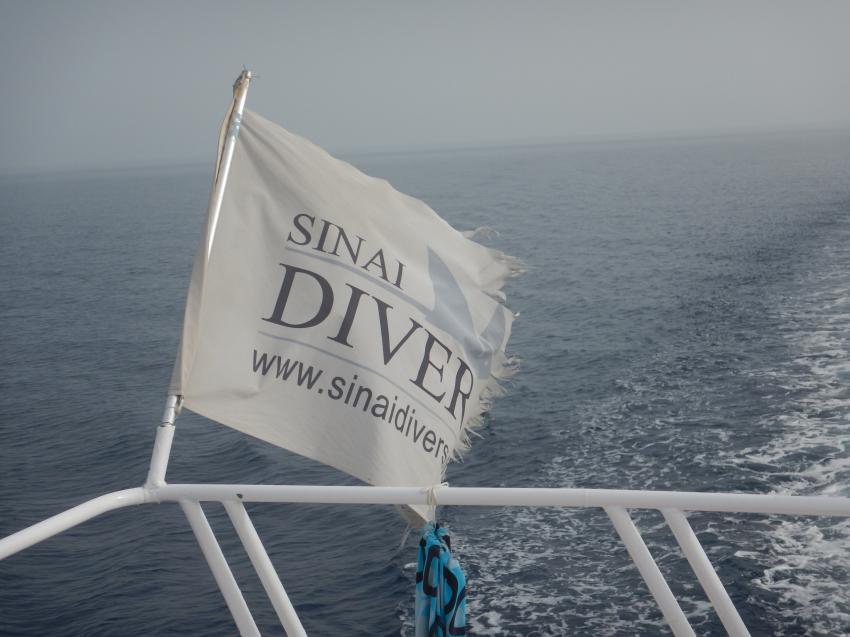 Sharm el Sheikh, Werner Lau Diving Center / Sinai Divers, Naama Bay, Ägypten, Sinai-Süd bis Nabq