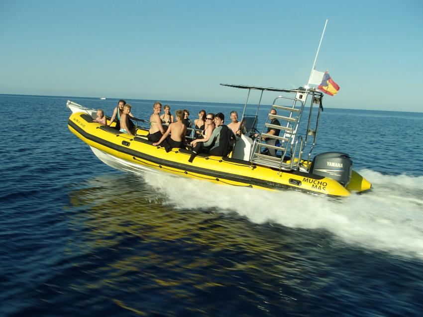Skualo Cala Ratjada Speedboot, tauchen cala ratjada, Skualo Dive Center, Cala Ratjada, Mallorca, Spanien, Balearen