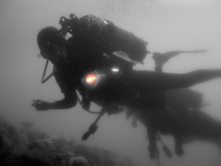 Golf von Tarent, Marina die Pulsano, Apulien,Italien,Taucher,schwarz/weiß Aufnahme,Negativ