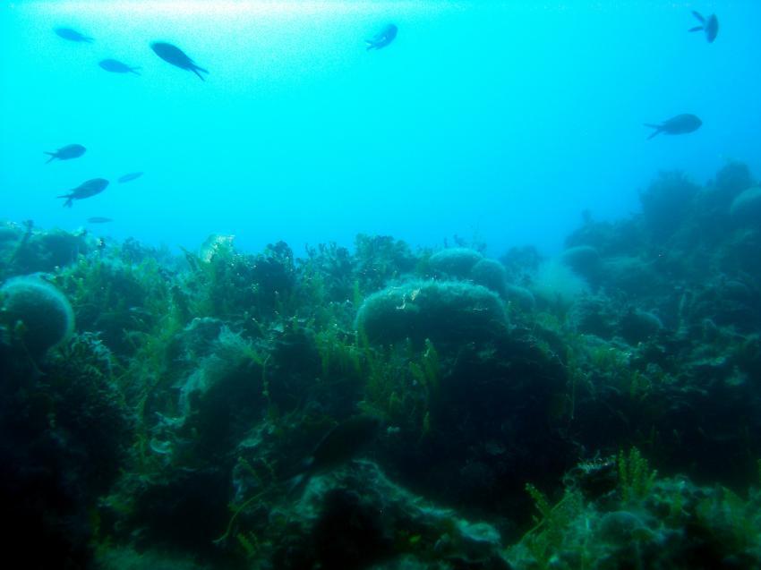 Golf von Tarent, Marina die Pulsano, Apulien,Italien
