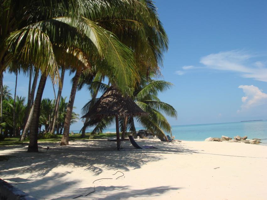 Traumhafter Strand mit Palmen - Mabul
