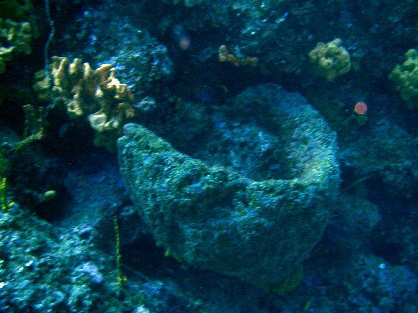 Bodrum - Turgutreis, Catal Ada - Cavern Reef, Bodrum - Turgutreis,Catal Ada - Cavern Reef,Türkei